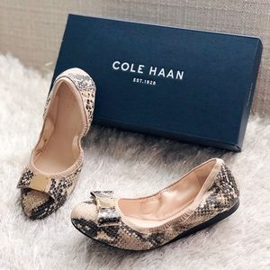 ✨New COLE HAAN Tali Bow Snake Embossed Ballet Flat